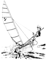cartoon of Sprint 15 catamaran